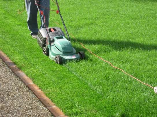 Reliable & Affordable Gardeners |High Quality Gardening & Landscaping.Contact us today image 8