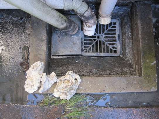 24Hr Sewer Plumber | Same Day Repair & Service‎   image 14