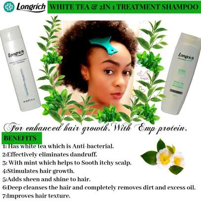 Longrich White Tea and Treatment Shampoo image 1