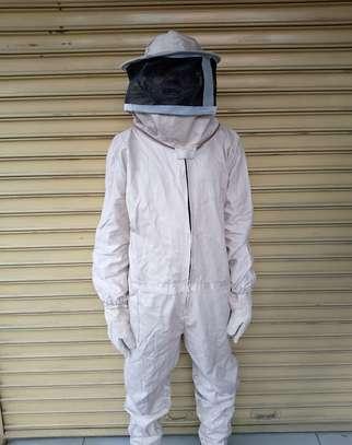 Bee Suit image 2