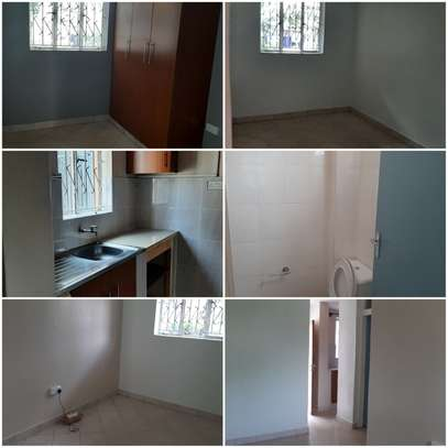 One bedroom extension to let on Ngumo