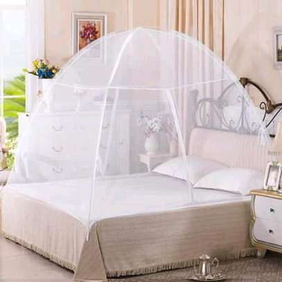 Tent Mosquito Nets (New) image 1