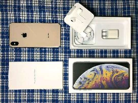 Apple Iphone Xs Max 512  Gigabytes With Charger Case for long picnics image 1