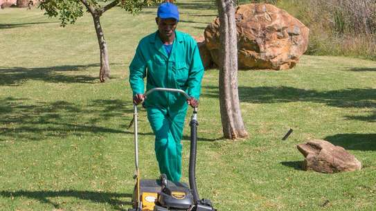 Bestcare Gardening Services | Professional Landscapers & Gardeners.Quality, Reliability & Affordable Rates. image 3