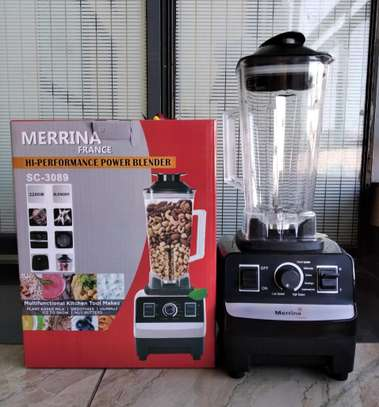 Professional commercial Blender Merrina image 3