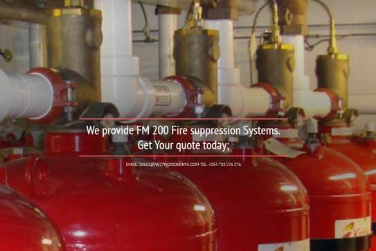 FM 200 Fire Suppression Systems image 1