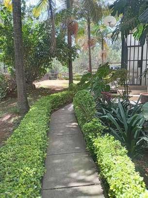 Superb 2 Bedrooms Apartments in Kileleshwa image 12