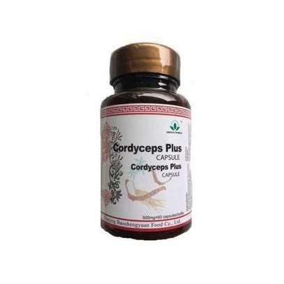 CORDYCEPS PLUS CAPSULE (500mgx60ccaps) image 1