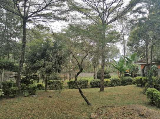 Four bedrooms bungalow to let in Ololua Ngong image 2