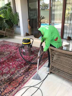 Professional carpets cleaning - Residential & Commercial cleaning image 1