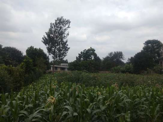 Runda - Land, Residential Land image 4