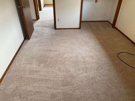 ESTACE 8MM THICK WALL TO WALL CARPETS image 1