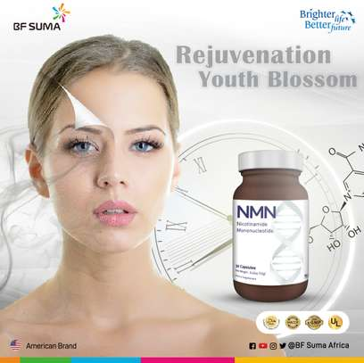 NMN Capsules (The fountain of youth) image 3