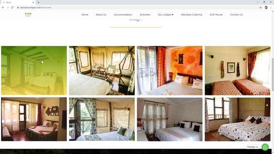 Website Development image 5