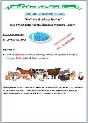 Farmcure Veterinary Services image 1