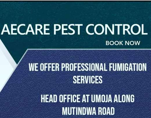 AFFORDABLE FUMIGATION SERVICES AT AECARE PEST CONTROL
