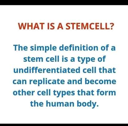 Stemcell (STC30) image 8