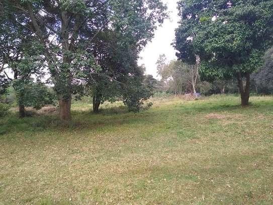 Karen - Bungalow, House, Residential Land, Land image 12
