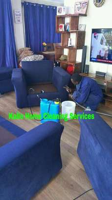 Sofa Cleaning image 5