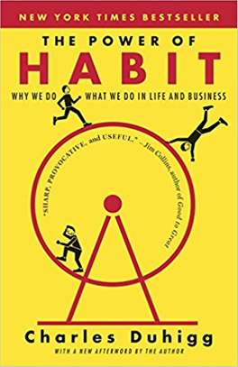 The Power of Habit: Why We Do What We Do in Life and Business image 1