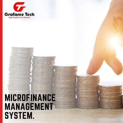 Microfinance System image 1