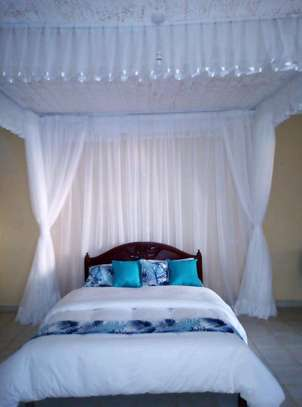 Ceiling mounted mosquito nets