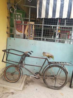 Carrier Bicycle for sale