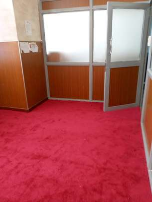 Elegant VIP wall to wall carpet image 4