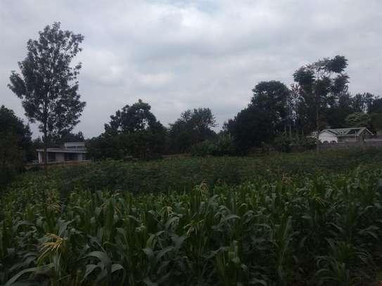 Runda - Land, Residential Land image 8