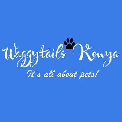 Waggytails Kenya. image 1