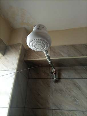 shower heads for salty /fresh /borehole water image 3