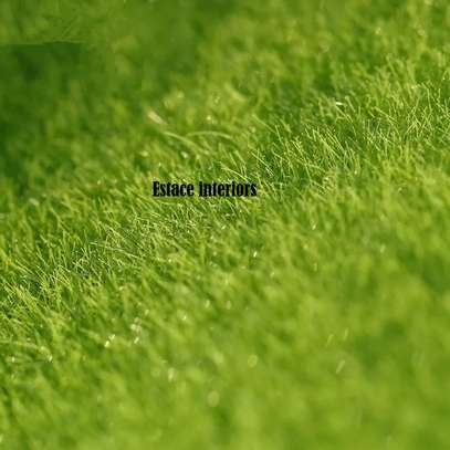 Artificial Grass carpets in KENYA image 7