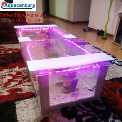 mega coffee table aquarium image 4