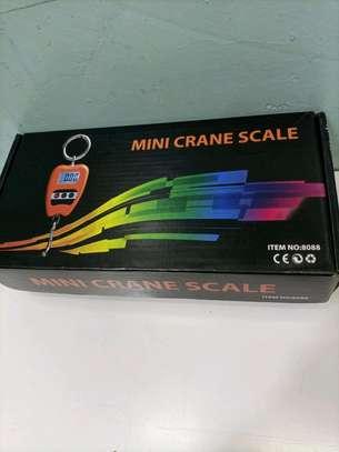 200kg mini crane scale image 1