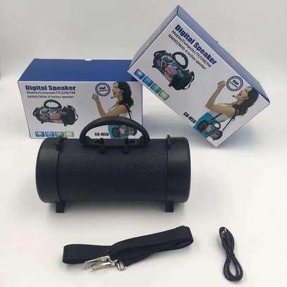 Bluetooth Speaker Outdoor With Shoulder Belt image 6