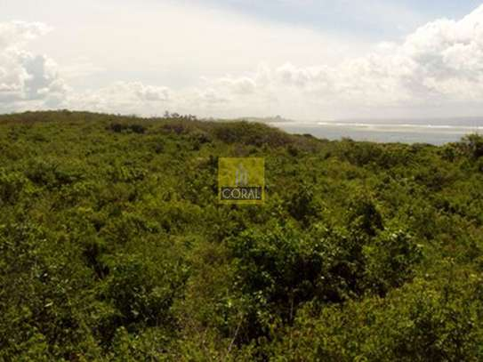 Diani - Land, Commercial Land, Residential Land image 4