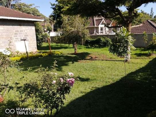 Nyari - Bungalow, House