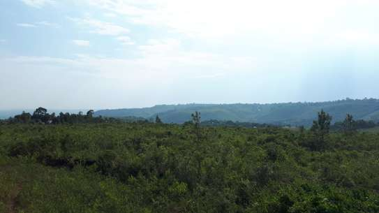 500 m² land for sale in Riat Hills image 10