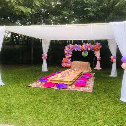 Picnic themed parties image 6