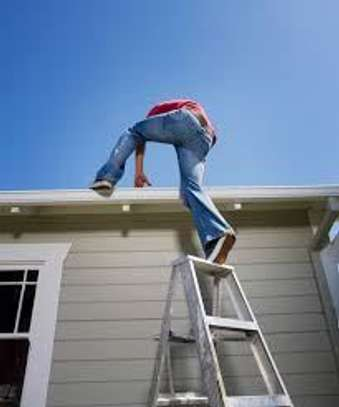 Gutter Cleaning and Repair Services image 3