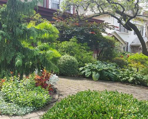 Bestcare Gardening Services | Professional Landscapers & Gardeners.Quality, Reliability & Affordable Rates. image 13