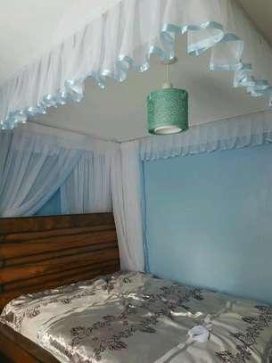 Rail Shears Mosquito Nets image 11