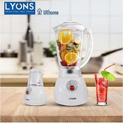 Lyons 2 In 1 Blender With Grinding Machine-fy-y44 image 2