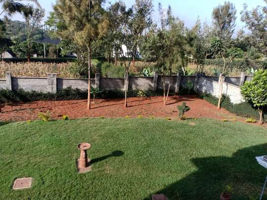 5 bedroom house for rent in North Muthaiga image 11