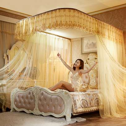 PREMIUM 2 STAND MOSQUITO NET WITH RAILS image 1
