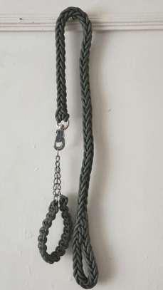 Dog Chain image 1