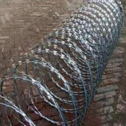 Deep galvanized razor wire image 1