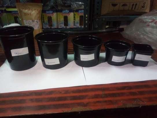 Reusable/Recyclable  Plastic Plant Seedling Flower Pots - 10 Pcs image 2