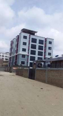 Elegant with perfect finishing two bedroom apartment ready to let in kitengela image 15