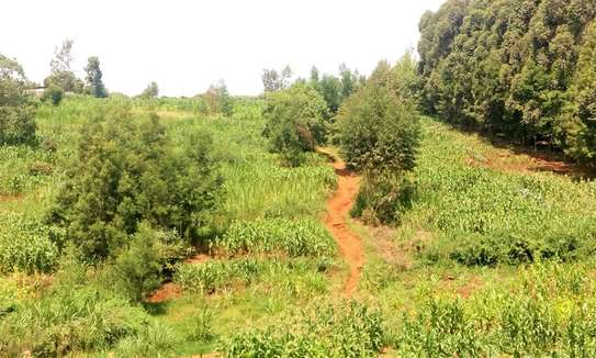 Land for sale in Gitaru